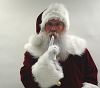 Planetsanta Classic-Look Velvet Santa Suit