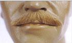 Executive Moustache II