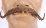 Musketeer Mustache