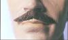 Executive Moustache III